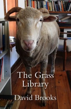 grass-library-cover-385x592
